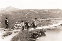 Qazax rayonunda dağları, 1950-ci illərdə