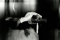 Ленкоранский район, 1986 г., приготовление тендира