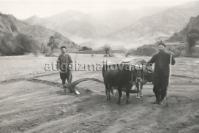 Kedabey Village, 1964